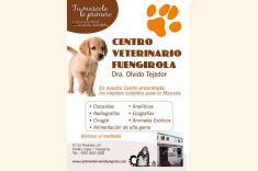 Photos of Centro Veterinario Fuengirola