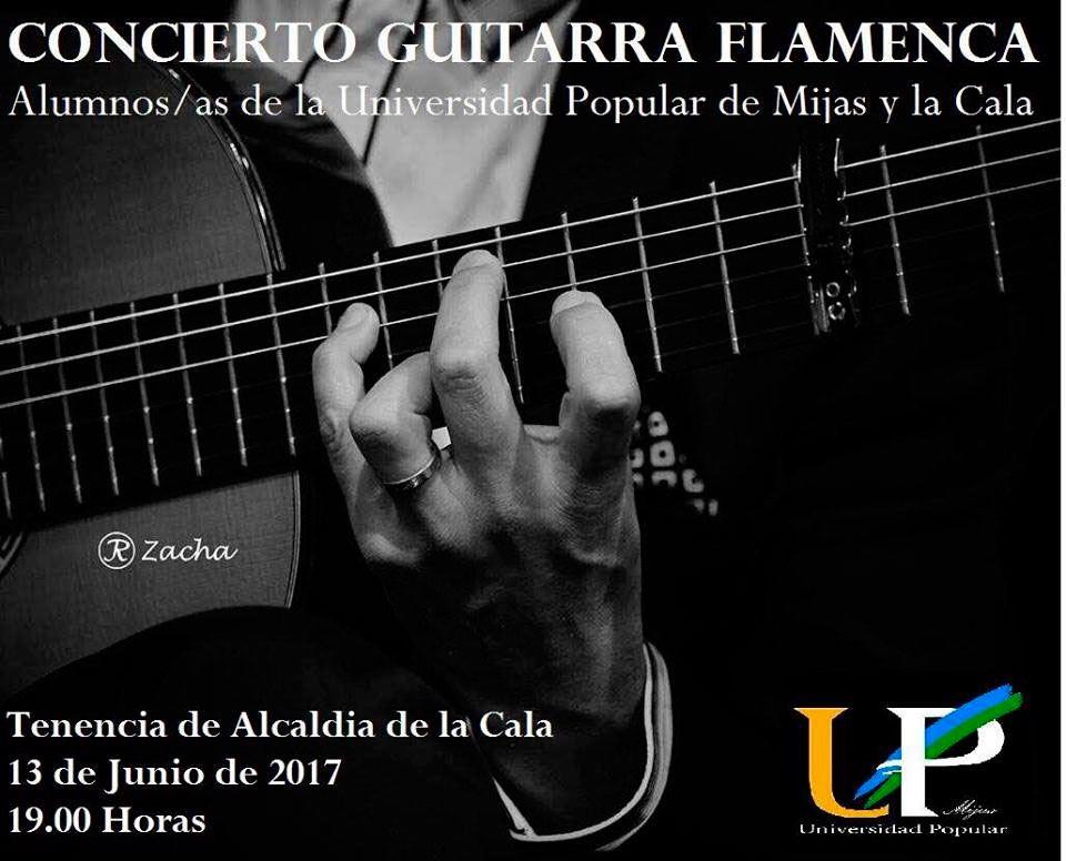 Flamenco guitar concert