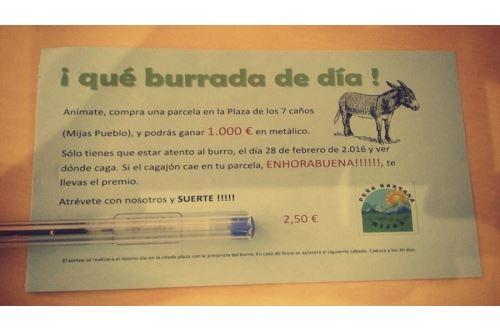 Qué Burrada de día - ¿Quién será el ganador de los 1.000 euros en Mijas?